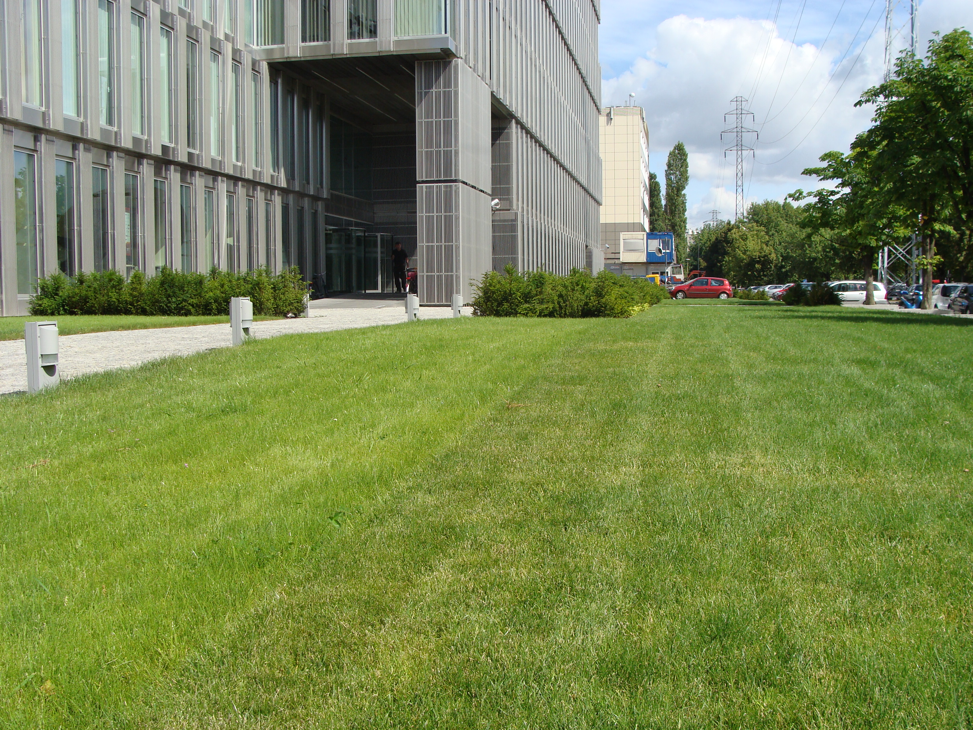 NAWIERZCHNIA NETTURF Advanced Grass - system stabilizacji trawnika - cena za m3